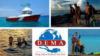 DEMA Board of Directors to Meet in San Diego, CA for Quarterly Board Meeting on May 19th and 20th