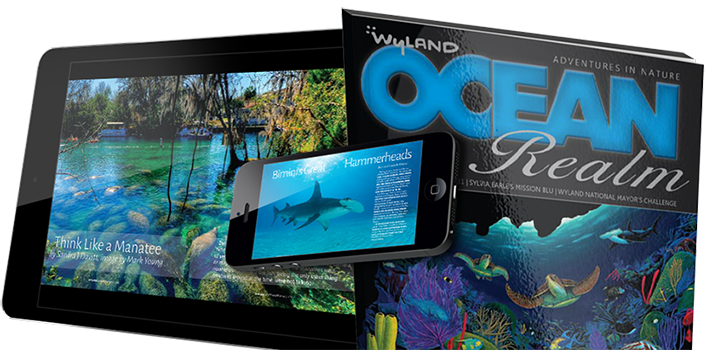 HOT OFF THE PRESS the Limited Edition of Wyland Ocean Realm