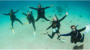Complete your PADI IDC at Stuart Cove's Dive Bahamas this Summer