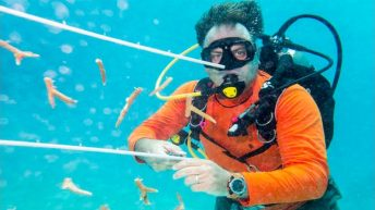 Ocean Frontiers: 20 Years of Conservation on Grand Cayman's Pristine East End