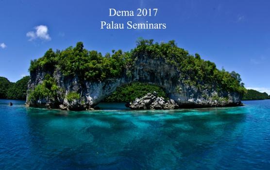 How to Make $10,000 Selling Palau