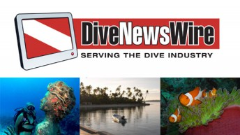 DiveNewswire unveils new website, logo and news distribution system