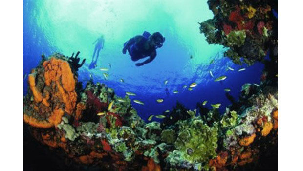 Cane Bay Dive Shop in USVI ready for dive travelers