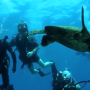 Dive Pirates to Hold TWO Seminars on Classified Diver Program during DEMA Show