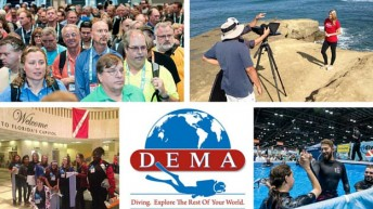DEMA Board of Directors and Industry Stakeholders to Meet in Long Beach, CA May 5th