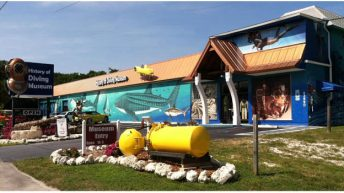 History of Diving Museum Announces 2016 Dive Into Reading Award Winners