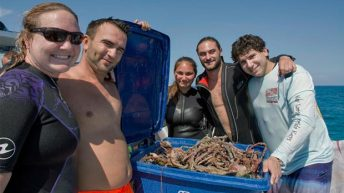 Keys-wide Underwater Clean-Up during Get into Your Sanctuary 2016 Celebration