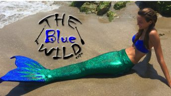 The Blue Wild prepares for 10th Anniversary