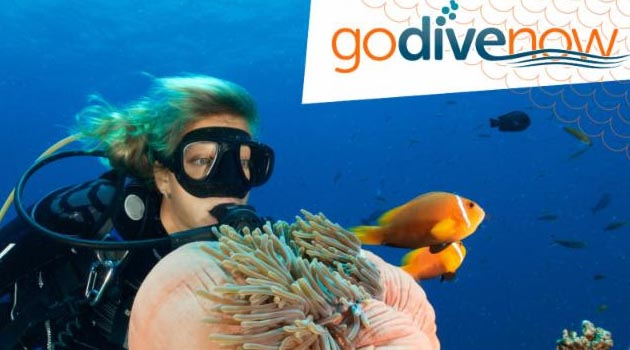 DEMA's GO DIVE NOW Campaign Highlighted at Beneath the Sea Session March 26