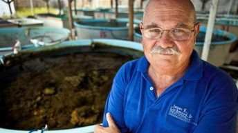 FKCC Marine Science Professor Appointed to Federal Advisory Committee