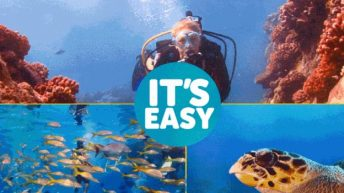 DEMA Go Dive NOW Program Highlighted at Out World-Underwater This Weekend