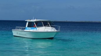 Toucan Diving Bonaire Celebrates Return of Blue Moon boat with 20 Percent Off Deal