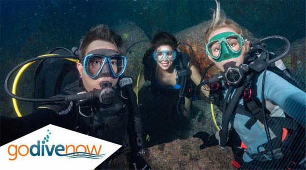 Go Dive Now's DIVE INTO SUMMER PHOTO CONTEST Can Help You Reach New Customers