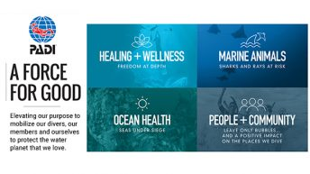 PADI Mobilizes Divers to be a Force for Good