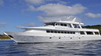 Aggressor Fleet Announces New Roatan Aggressor Starting June 3