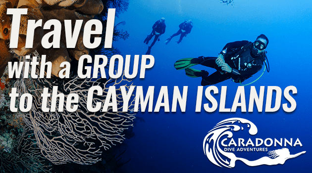 Caradonna Offers Exclusive Group Comps for the Cayman Islands