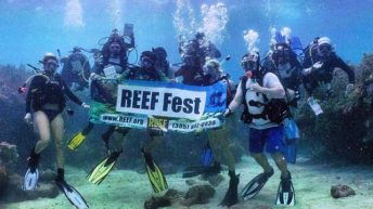 Key Largo's REEF Fest to Celebrate Florida Keys Marine Conservation