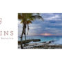 <b>DEMA Booth #1946</b><br> Eagerly-anticipated Delfins Beach Resort Bonaire Now Open; Impressive Facility Boasts Brand-New Dive Facility