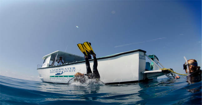 UNEXSO'S UNLIMITED Boat Diving Deal is back AND better than EVER!